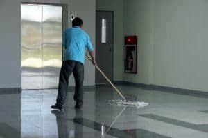 clean-well Van Sant Law