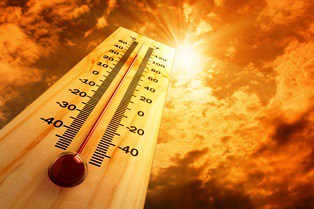 heat illnesses and workers