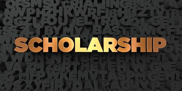 Scholarship Van Sant Law