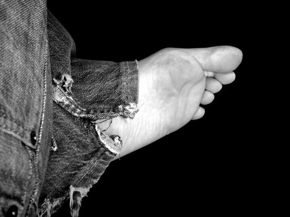 foot Van Sant Law