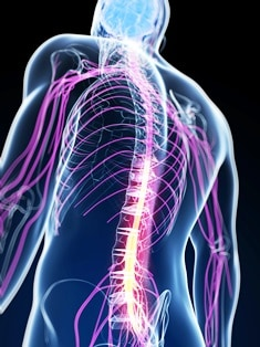 spinal cord injuries from truck accidents